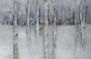 Birch Snowfall