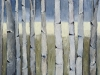 daybreak-aspens.jpg