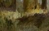 Detail~Birch Forest~Autumn